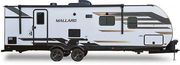 Mallard(TT)
